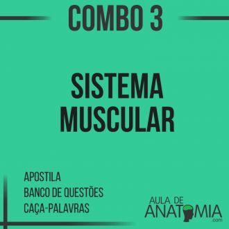 Combo 3 - Sistema Muscular